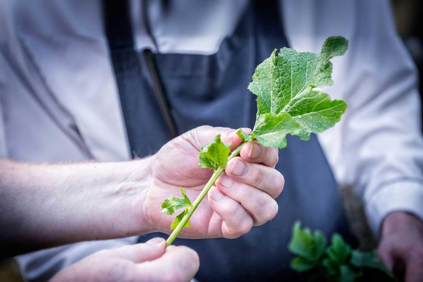 Guests enjoying The Whitebrook hospitality